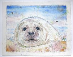 'Seal Pup' Watercolour Mijello_Mission Gold Class and Ink-pen on Saunders Waterford by St Cuthberts Mill, 48 x 38 cm St Cuthbert, Gold Class, Seal Pup, Petra, Saints, Lion Sculpture, My Arts, Watercolor, Ink
