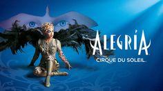 El Circo del Sol lleva pro primera vez a Mallorca. Alegria.