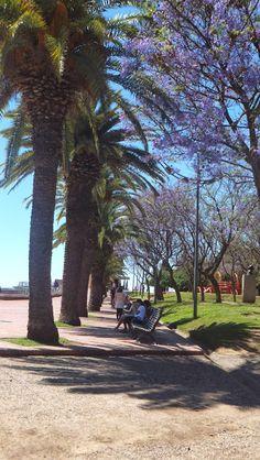 Parque de España #Rosario #Argentina