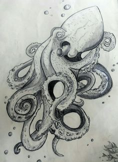 Octopus Sketch, Octopus Drawing, Octopus Tattoo Design, Octopus Wall Art, Octopus Tattoos, Tattoo Designs, Tattoo Design Drawings, Tatoo Art, Body Art Tattoos