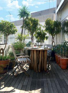 Mesa feita de tronco de quariquara é palco dos cafés da manhã em família