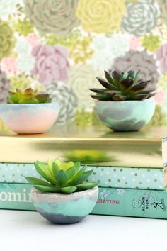 Are you in need of more planters for your growing collection of houseplants? These stylish DIY concrete planters are inexpensive and easy to make. Diy Concrete Planters, Concrete Bowl, Concrete Crafts, Concrete Art, Concrete Projects, Concrete Design, Diy Planters, Succulent Planters, Polished Concrete