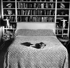 Pet Cat Sitting on Bed of Author Dorothy Parker Photographic Print Dorothy Parker, Book Lamp, Bed Photos, Time Photo, Empty Wall, Life Pictures, Cat Sitting, Sleep, Writers