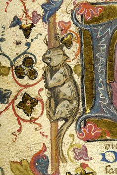Cat climbing a tree | Also from the Breviary from Taranto, Italy and created between 1350 and 1400