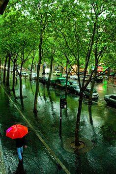 Summer Rain, Paris, France photo via wander