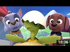Paw Patrol Full Episodes Paw Patrol Cartoon Paw Patrol Episode Movie Ful...