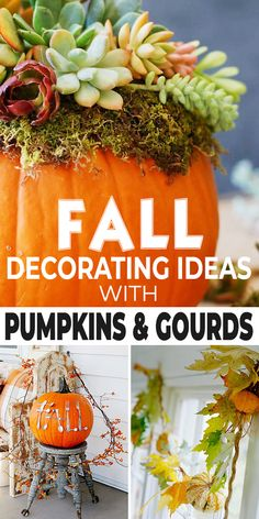 Pumpkin Decorating, Decorating On A Budget, Fall Decorating, Fall Diy, Autumn Fall, Fall Crafts, Halloween Crafts, Fall Pumpkins, Diy Craft Projects