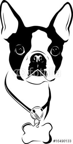T shirt, legging, hoodie for Boston Terrier lovers. Order here: https://www.sunfrog.com/JohnyD/bostonterrier shirts