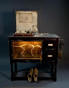 A wonderful display cabinet by Ron Pippinm.