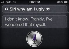30 Really Funny Siri Responses to Weird Questions - Quertime
