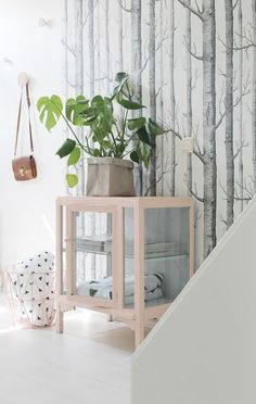 woods wallpaper by cole and son