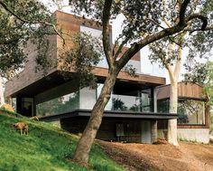Modern House Design : Oak Pass Tree House by Walker Workshop Design Build
