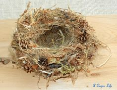 Bird nest tutorial from A Lapin Life Bird Nest Craft, Bird Crafts, Nature Crafts, Easter Crafts, Bird Nests, Easter Ideas, Easter Decor, Nester, Elmer's Glue
