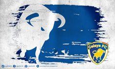 CelayaFC • 170114CTG(3) LigraficaMX | Celaya FC | Pinterest | 3)