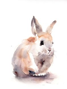 Bunny Painting, Original Watercolor Painting, Rabbit Painting, Watercolour Art by CanotStop on Etsy