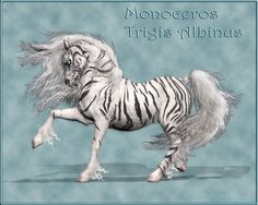 Monoceros Tigris Albinus by *Daio on deviantART