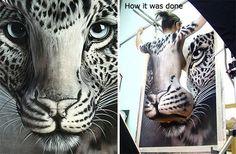 Il rarissimo leopardo dal muso callipigio.