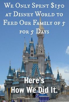 Feed Your Family for Less: Eat Cheap at Disney - This family spent $150 at the parks to feed their family of 5 for 5 days.... It is possible to save money on a Disney vacation.