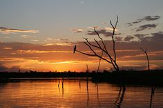 Sundowner on the lake Kariba