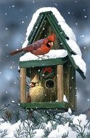 Cardinals And Birdhouse In Snow Fine Art Print