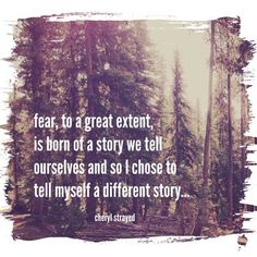 Fear, to a great extent, is born of a story we tell ourselves and so i chose to tell myself a different story ~Cheryl Strayed