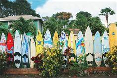 Maui photography / surfboards / Makawao, Maui
