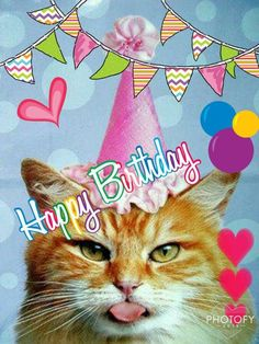 loretta young rogers · birthday/cats · happy birthday cat birthday wishes Cat Birthday Wishes, Happy Birthday Best Friend, Best Birthday Quotes, Happy Birthday Gifts, Happy Birthday Funny, Happy Birthday Messages, Happy Birthday Images, Happy Birthday Greetings, Birthday Pictures