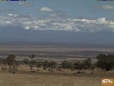 eine Webcam auf den Kilimandscharo. Die beste Möglichkeit ist am frühen Morgen und am Abend.  Wer mal mit uns auf eine Safari in Kenia kommen möchte und ihn LIVE sehen, guckst Du ! http://www.safaris-in-kenia.de/kenia-safaris/