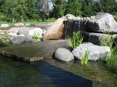 Natural Swimming Ponds Texas | Natural Swimming Pools Design Ideas, Pictures, Remodel, and Decor ...