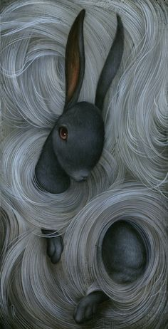 Fine art illustrations by Dan May