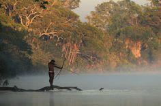 Índio da tribo indígena kalapalo caçando na água - Parque Indígena do Xingu - por  Fábio Colombini