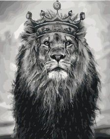 Lion Head Tattoos, King Tattoos, Lion Images, Lion Pictures, Majestic Animals, Animals Beautiful, Lion Of Judah Jesus, Lion Photography, King Painting
