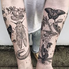 Memory fragments - second arm featuring cicada, millipede, tufted titmouse skeleton, mushrooms, click beetle, honey suckle, and Queen Anne's lace by @Freeorgy #science #nature #biology #tattoo #tattoos #ideas