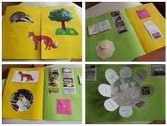 Fuchs und Dachs: Lapbook, Wissensheft, rechnen und knobeln