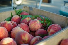 Fresh peaches from southern Illinois.