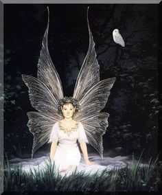 Fairy Friends 6 - Fairy of the night - Animated Fantasy Art - The Fairy Realm