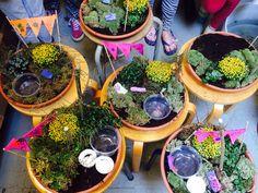 Mini tuintjes PLANTaardig  plantaardigmiddelburg.nl