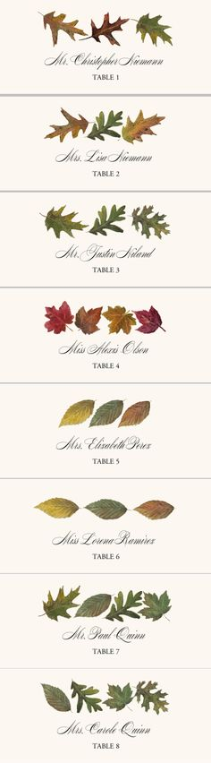 Leaf Pattern Assortment Autumn Leaves Wedding Place Cards