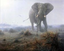 Canvas Art Print Animals Elephants Oil painting Picture Printed on canvas P122