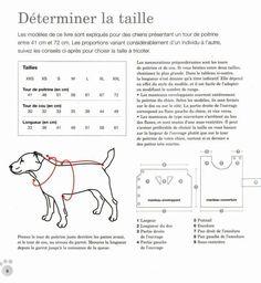 Risultati immagini per vetement chien crochet Crochet Dog Sweater, Knit Crochet, Patron Crochet, Elfa, Dog Sweaters, Dog Coats, Whippet, Cocker Spaniel, Bull Terrier