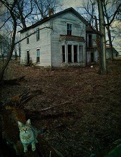 An Abandoned House On Old Mill Road In Roanoke Va Yep