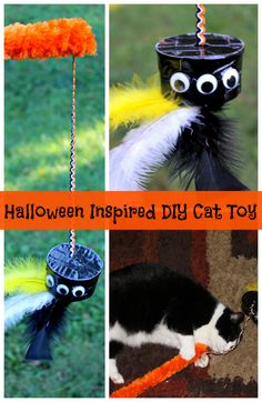 Halloween Inspired DIY Homemade Cat Toy made from an empty Purina Muse® Natural Cat Food can! [ad] #MyCatMyMuse #CollectiveBias