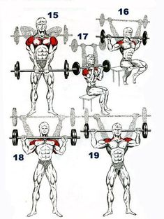 Muscle Day: Shoulders Workout