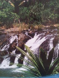Rio Tanama,adjuntas  Puerto Rico