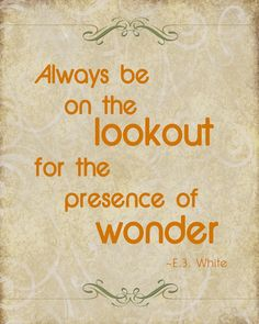 Always be on the lookout for the presence of wonder. White Source by Cute Quotes, Great Quotes, Inspirational Quotes, Charlottes Web Quotes, Bookmarks Quotes, Web Tattoo, Message Quotes, Little Corner, Quotes White