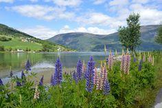 Olden, Nordfjord, Norway, by Seventh-Heaven, via Flickr