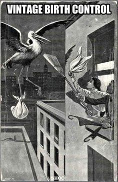 Taking stork of the situation.