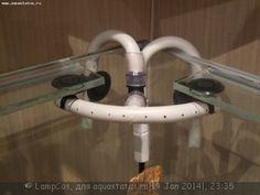 Мой аквариум 210 литров (LampCos) — флейта общий вид.JPG (355.07 КБ) 1758 просмотров