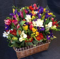 Love Rose, Love Flowers, My Flower, Beautiful Flowers, Wedding Flowers, Flower Drawing Images, Freesia Flowers, Flower Aesthetic, Flower Wallpaper