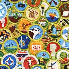 lots of merit badges